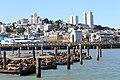 Pier 39 - panoramio (20).jpg