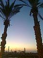 PikiWiki Israel 16100 Arad.jpg