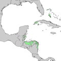 Pinus caribaea range map 1.png