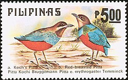 Pitta kochi and Pitta erythrogaster 1979 stamp of the Philippines.jpg