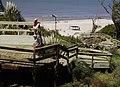Playa de Atlantida - panoramio.jpg