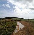 Poças de água que se formam nos caminhos de terra, aquando das chuvas de Abril.jpg