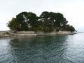 Pointe d'Arradon (3).jpg