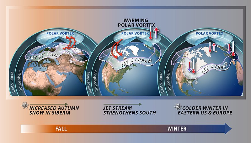 Polar vortex and weather impacts due to stratospheric warming