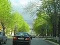 Polevskoy, Sverdlovsk Oblast, Russia - panoramio (4).jpg