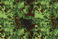 Polish Woodland Flecktarn.png