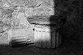 Pompeii regioVI-cFaunop.jpg