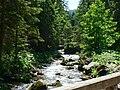Potok Olczyski.jpg