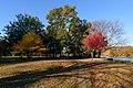 Prospect Park New York November 2016 009.jpg
