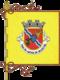 Flag of the Concelhos Arcos de Valdevez