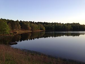 Holly Springs National Forest - Puskus Lake in Holly Springs National Forest