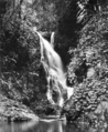 Queensland State Archives 413 Elabana Falls Canungra Creek West Branch Lamington National Park Beaudesert Shire September 1933.png