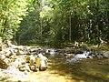 Río Asa, en la zona de Martha Lorena. - panoramio.jpg