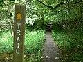 Rail Trail - geograph.org.uk - 827404.jpg