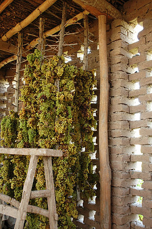 Chunche - Hanging grapes being dried for raisins inside a Chunche.