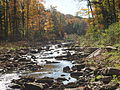 Red Hill Creek in the Fall.JPG