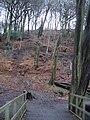 Redisher Woods - panoramio.jpg