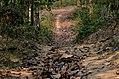 Rema-Kalenga Wildlif Sanctuary 8.jpg
