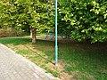 Remscheider Straße Pirna (44490374332).jpg