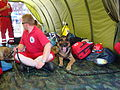 RescueShowGdansk 05.jpg