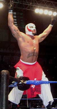 A masked wrestler posing on the second turnbuckle during a wrestling event