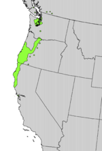 Rhododendron macrophyllum range map.png