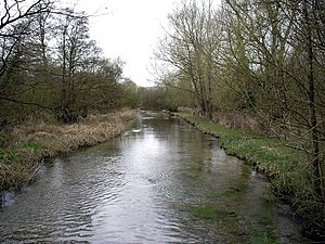 River Dever - River Dever, Bransbury