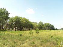 River Raisin National Battlefield Park2.jpg