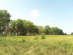 River Raisin National Battlefield Park2.jpg
