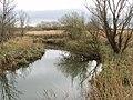 River Sow at Castlebridge - geograph.org.uk - 1237789.jpg
