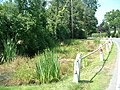 Roadside pond at Blank's Farm - geograph.org.uk - 25677.jpg