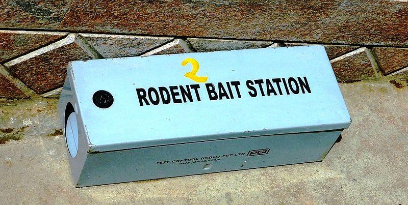 Rodent Bait Station, Chennai, India.jpg