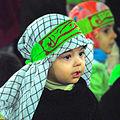 Roghaye-Photo by Alireza Habibi (2).jpg
