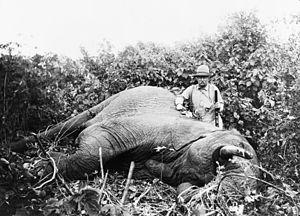 Mongalla, South Sudan - Theodore Roosevelt on Safari