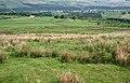 Rough grazing near Blinkbonny - geograph.org.uk - 814520.jpg