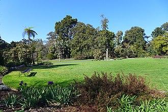 Royal Botanic Gardens Victoria - Southern Lawn