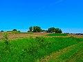 Rural Rock County - panoramio.jpg
