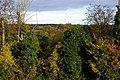 Rural Shropshire - geograph.org.uk - 321787.jpg
