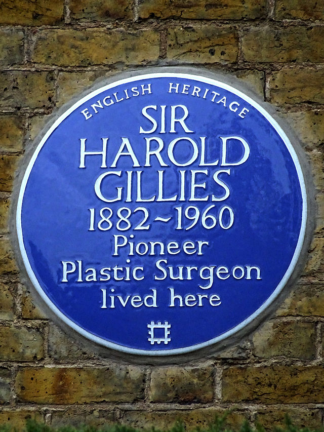 Harold Gillies blue plaque - Sir Harold Gillies 1882-1960 pioneer plastic surgeon lived here