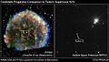 SN1572.Companion.jpg