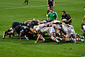 ST vs Harlequins - Match-25.jpg