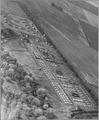 Sacramento, California. Air view of Winters Farm Works Community (F.S.A.) with farm labor homes (F.S . . . - NARA - 521767.tif