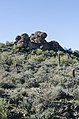 Saguaro Lake Hiking Trail, Tonto National Park, Arizona - panoramio (68).jpg