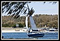Sailing on the Southport Broadwater-1 (6208874801).jpg