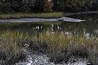 Salt Marsh at Hoffler Creek 2 LR.jpg