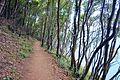 Santoña - trail 9.jpg