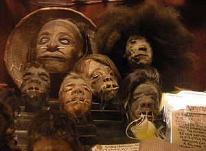 "Shrunken head - Shrunken heads in the permanent collection of ""Ye Olde Curiosity Shop"", Seattle, Washington, U.S. These are probably a mix of real and fake."