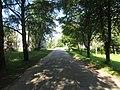 Seiliūnai 67224, Lithuania - panoramio (5).jpg