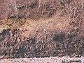 Shale strata, Gunnerside - geograph.org.uk - 789193.jpg