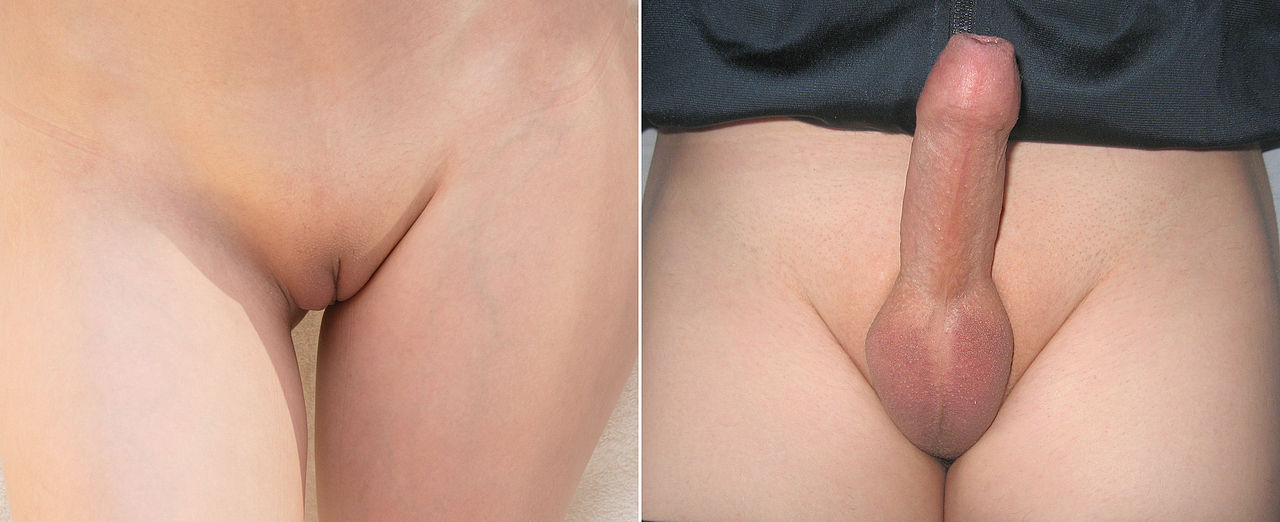 Shaved Genitalia Female 37